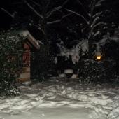 Giardino innevato di notte
